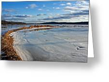 Frozen Shoreline Greeting Card