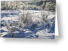 Frozen Winter Landscape Greeting Card