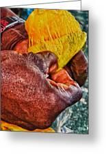 Fruity Mango Greeting Card by Daniel Marcion