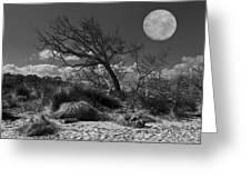 Full Moon Over Jekyll Greeting Card by Debra and Dave Vanderlaan