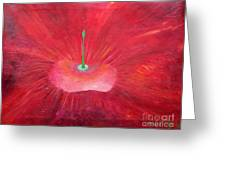 Full Red Flower Greeting Card