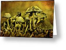 Fungus World Greeting Card by Chris Lord