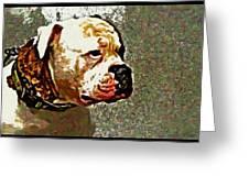 Funky Bulldog Greeting Card