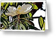 Funky Magnolia Greeting Card
