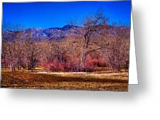 Furrowed Field At South Platte Park Greeting Card