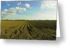 Furrowed Land Greeting Card