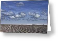 Furrows In A Texas Field Greeting Card