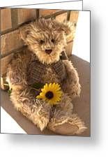 Fuzzy Teddy Greeting Card