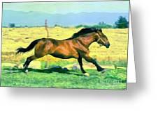 Gallope Greeting Card
