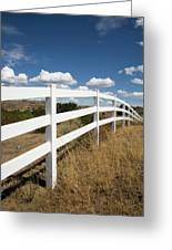Galloping Fence Greeting Card