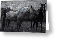 Galloping Stones Greeting Card
