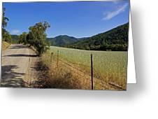 Galls Creek Road In Southern Oregon Greeting Card