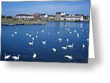 Galway, County Galway, Ireland Greeting Card