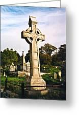 Galway Monastic Ruins 1 Greeting Card by Douglas Barnett