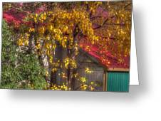 Garage And Leaves Greeting Card