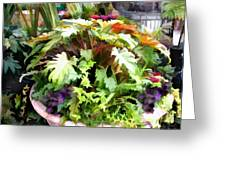 Garden Bowl Of Foliage Greeting Card