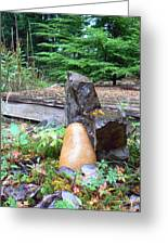 Garden Energy Rocks Greeting Card