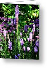 Garden Flowers 1 Greeting Card