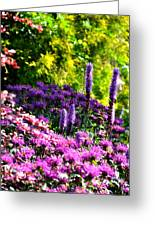 Garden Flowers 3 Greeting Card