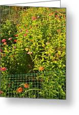 Garden Flowers Mixed Colors Greeting Card