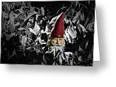 Garden Gnome With Gray Background Greeting Card