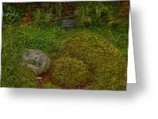 Garden Of Dreams Greeting Card