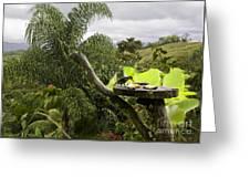 Garden Of Paradise Greeting Card