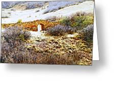 Garden Of The Gods - Bridge Panorama Greeting Card