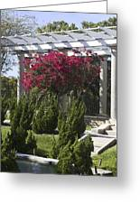 Garden Pergola Greeting Card