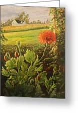 Garden Poppies Greeting Card