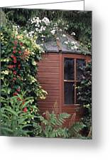 Garden Shed Greeting Card by Archie Young