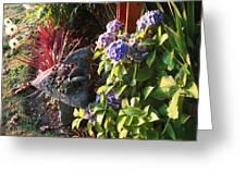 Garden Zen Art Greeting Card
