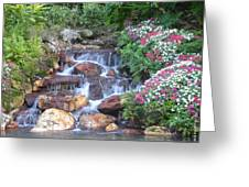 Gardens At Seaworld Greeting Card