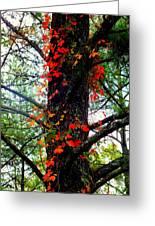 Garland Of Autumn Greeting Card