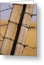 Gate Posts Join A Barbed Wire Fence Greeting Card by Gordon Wiltsie