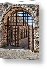Gateway To The Unknown Greeting Card by Sandra Bronstein