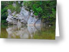 Gator Rock Greeting Card