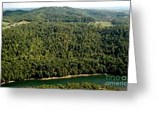 Gauley River Aerial View Greeting Card