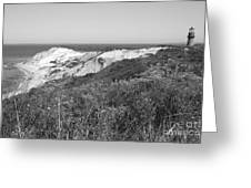 Gay Head Lighthouse With Aquinna Beach Cliffs - Black And White Greeting Card