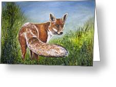 Gazing Fox Greeting Card