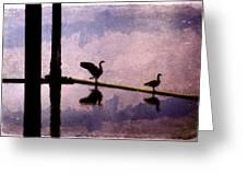 Geese At Dawn Greeting Card