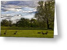 Geese On Painted Green 2 Greeting Card