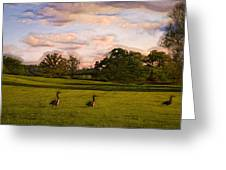 Geese On Painted Green Greeting Card by Bill Tiepelman