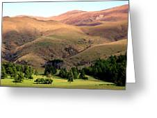 Gentle Rolling Hills Greeting Card