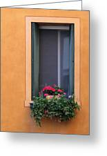 Geraniums In A Yellow Window In Treviso Italy Greeting Card
