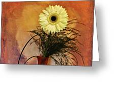Gerber Daisy Still Life Greeting Card