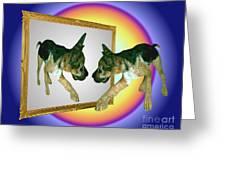 German Shepherd Puppy In Mirror Greeting Card