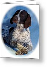 German Shorthaired Pointer 790 Greeting Card