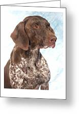German Shorthaired Pointer 960 Greeting Card