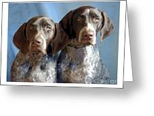 German Shorthaired Pointers 127 Greeting Card